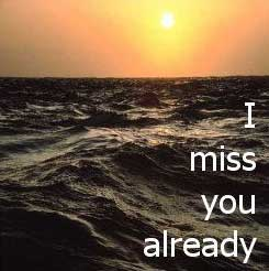 Miss You Already Quotes Beauteous I Miss You Already Myspace Comments And Graphics Myspace Comments