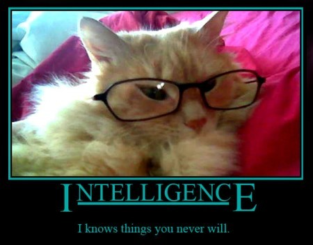 intelligence i know things you never will