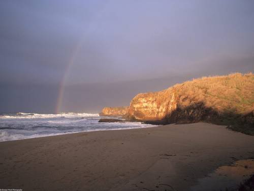A Rainbow that Leads to Pacific
