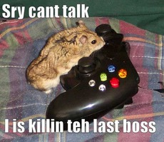 mouse playing xbox