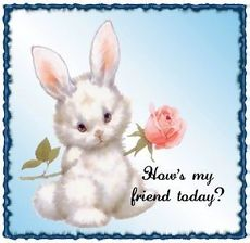 how's my friend today bunny rabbit
