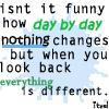 isn't it funny how day by day nothing changes but when you look back everything is different icon