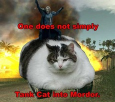 one does not simply tank cat into mordor