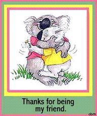 thanks for being my friend koala bears