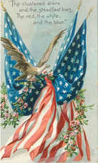 the clustered stars and the steadfast bars the red white and blue