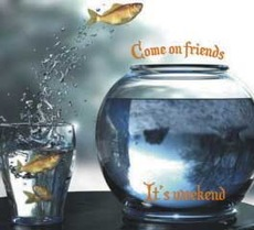fish - come on friends it's weekend