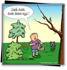look mom more brown eggs