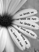 he loves me he loves me not