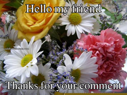 Hello my friend Thanks for your comment