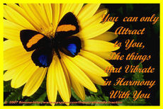you can only attract to you the things that vibrate in harmony with you