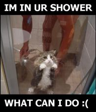 im in your shower what can i do?