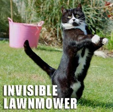 invisible lawn mower