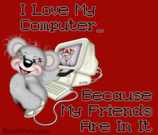 i love my computer because my friends are in it