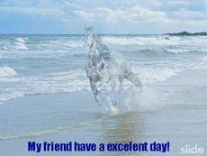 my friend have an excellent day