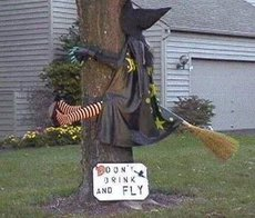 don't drink and fly witch smashed against a tree