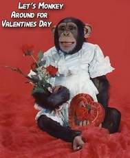 lets monkey around for valentines day