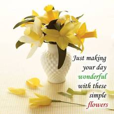 Just making your day wonderful with these simple flowers