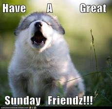 Have a great Sunday Friendz!