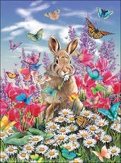 bunny in field of butterflies