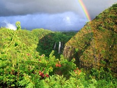 Rainbow Over Opaeka'a Falls