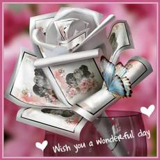 wish you a wonderful day